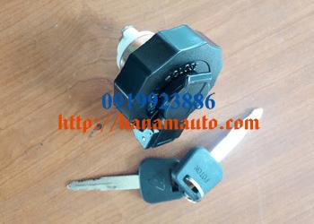 1104911100009-0919923886-thacotruonghai-hanamauto