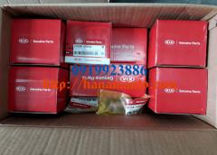 0K75A23200-0919923886-thacotruonghai-hanamauto