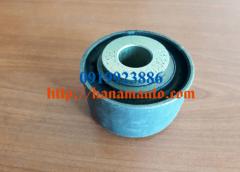 1B24950200126-0919923886-thacotruonghai-hanamauto