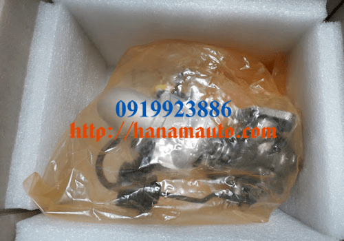 282314A800-0919923886-thacotruonghai-hanamauto