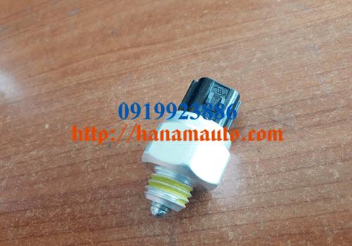 9386049600-0919923886-thacotruonghai-hanamauto